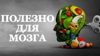 ТОП продуктов для мозга от Нейрософии. Полезная пища для эффективной работы вашего мозга