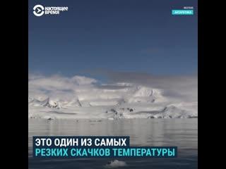 В Антарктике выдалось критично теплое лето