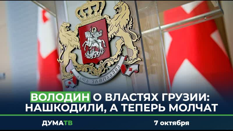 Володин о властях Грузии нашкодили а теперь молчат