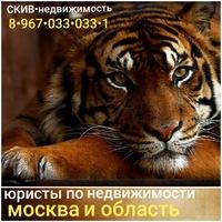 Игорь Скив