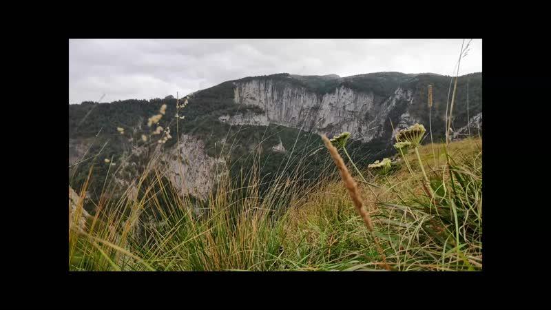 Зеленый шум Сахрая экспедиция в Адыгею лето 2019
