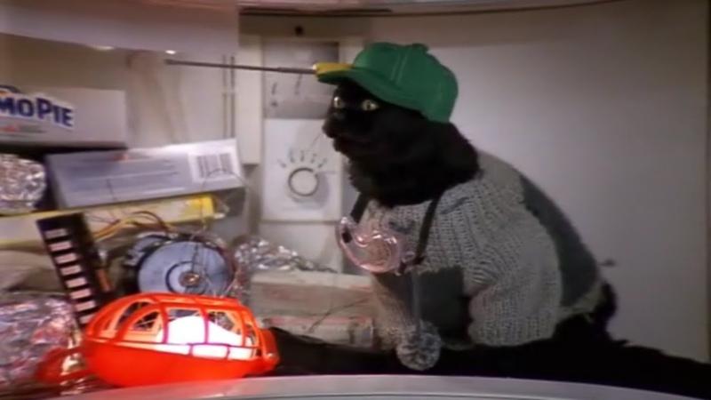 Все моменты с котом селем Сабрина маленькая ведьма