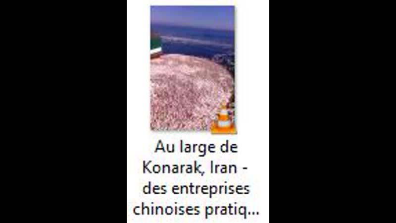 Au large de Konarak Iran des entreprises chinoises pratiquent la pêche élec
