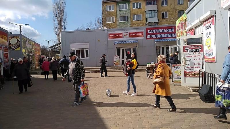 Красивая баянистка Константиновка Хитрый рынок