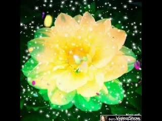 МУЗЫКАЛЬНЫЙ ВОЛШЕБНЫЙ ЦВЕТОК MUSIC MAGIC FLOWER