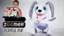 Игривый робот щенок    Zoomer playful pup