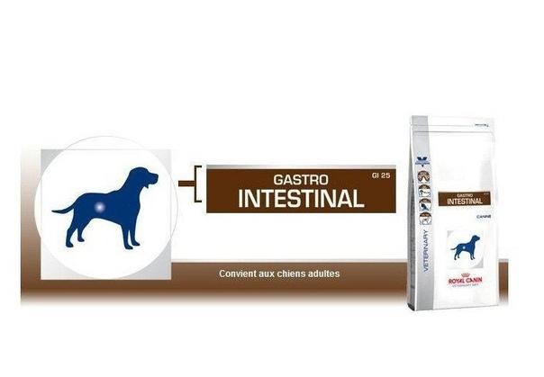 Диета для собаки при диарее