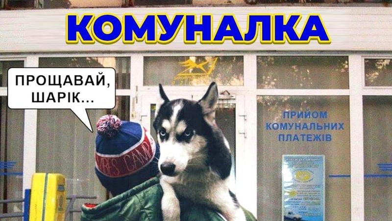 [Думки фотографа] - Газ та собака