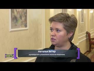 Почему закон не ускорит строительство собачьего приюта в Воронеже