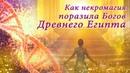 Энергия Жива. Как некромагия поразила Богов Древнего Египта