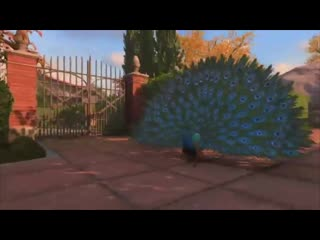 I was today years old when i found out they had a peacock chilling in the cut. black ops 4