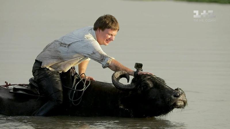 Как управлять буйволом и гастрономический кошмар Маражо. Бразилия. Мир наизнанку 10 сезон 32 выпуск