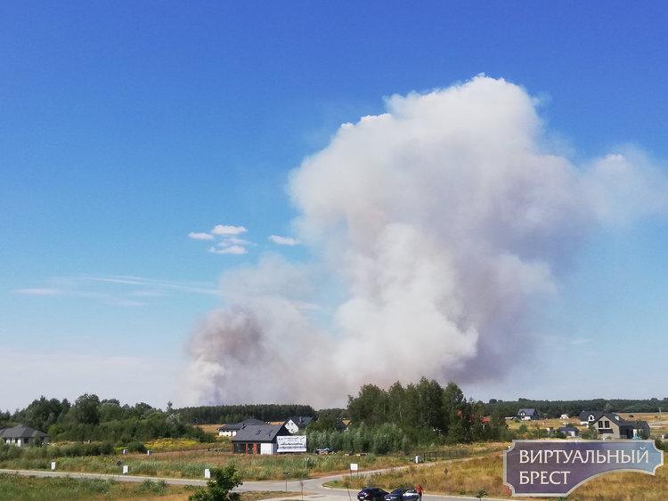 Серьёзный пожар в экосистеме Польши напугал брестчан