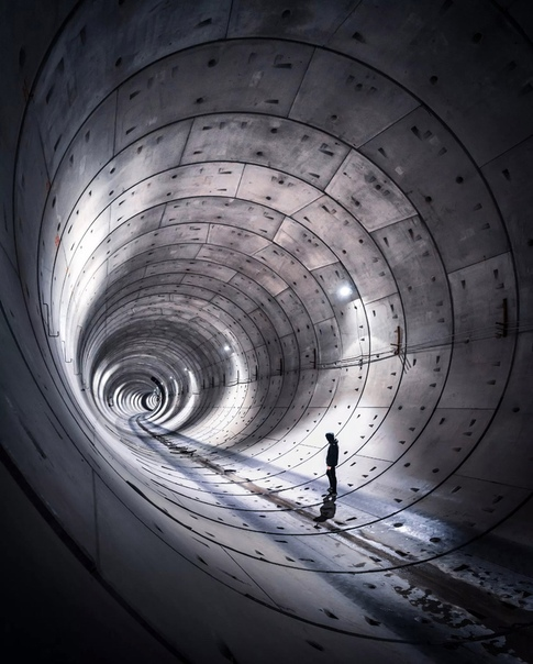 «Прогулка по туннелю» Фото: Jeroen van Dam