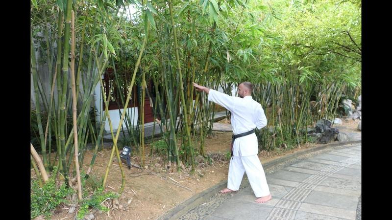 Goju Ryu training at home 6 Jumbi Undo Saifa kata in a restricted area Sensei Aleksandr Grib