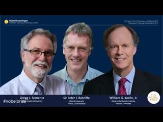 Нобелевская премия по физиологии и медицине 2019