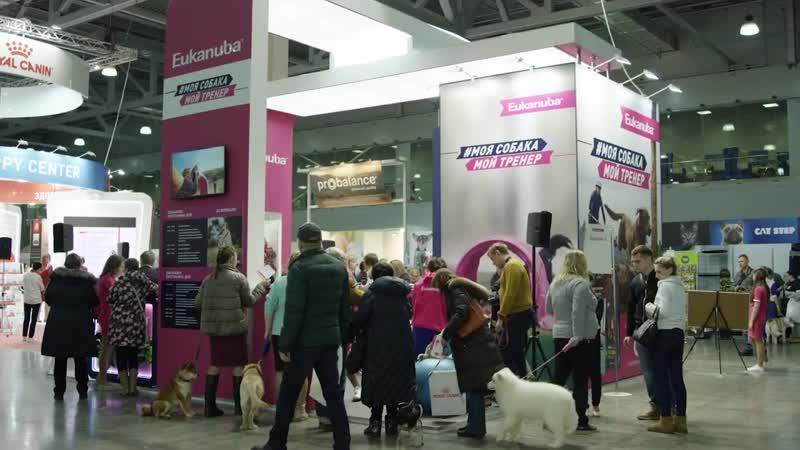 Международная выставка собак, 25-26 мая, Крокус Экспо