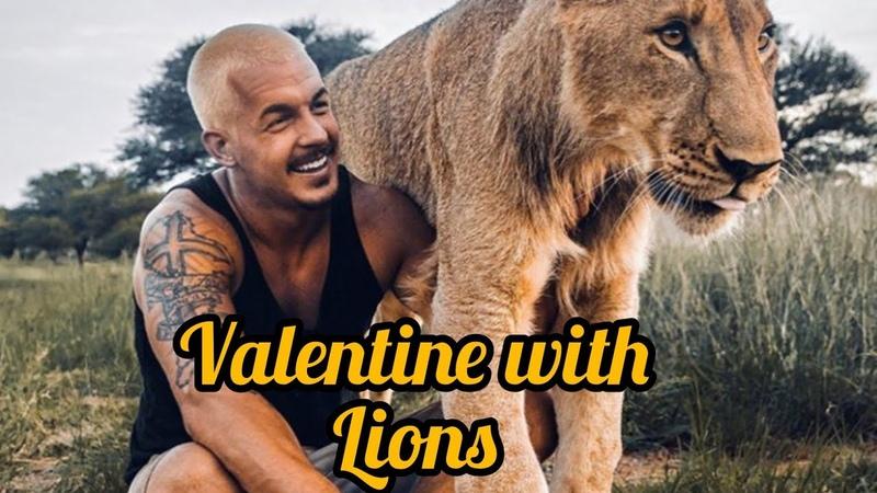 Spending Valentine With Lions Dean Schneider