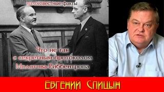 Что не так с секретным протоколом пакта Молотова-Риббентропа. Евгений Спицын. World War II. #ВОВ.