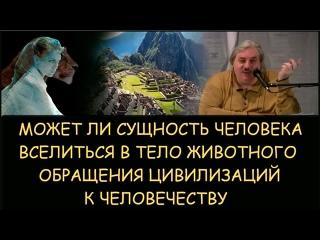 Николай Левашов. Может ли сущность человека вселиться в животное. Обращения к людям других цивилизаций. Снятие блокировок