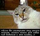Персональный фотоальбом Алие Фатаевой