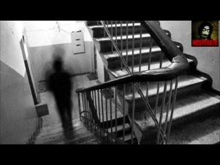 [NOSFERATU] Истории на ночь - Нечто в подъезде