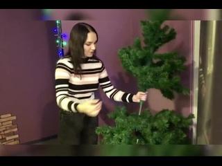 Акция Сохраним зеленую ель . Проект Елочке не холодно зимой!