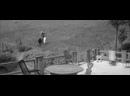 «Жюль и Джим» 1962 реж. Франсуа Трюффо