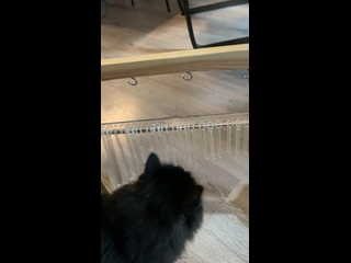 Видео от Натальи Калугиной
