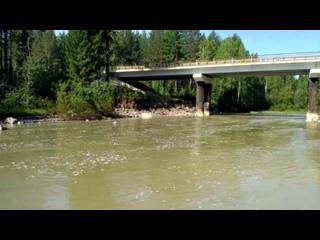 Река Тальтия погибла