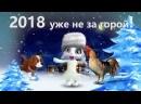 ВИДЕО - 2018 УЖЕ НЕ ЗА ГОРАМИ!