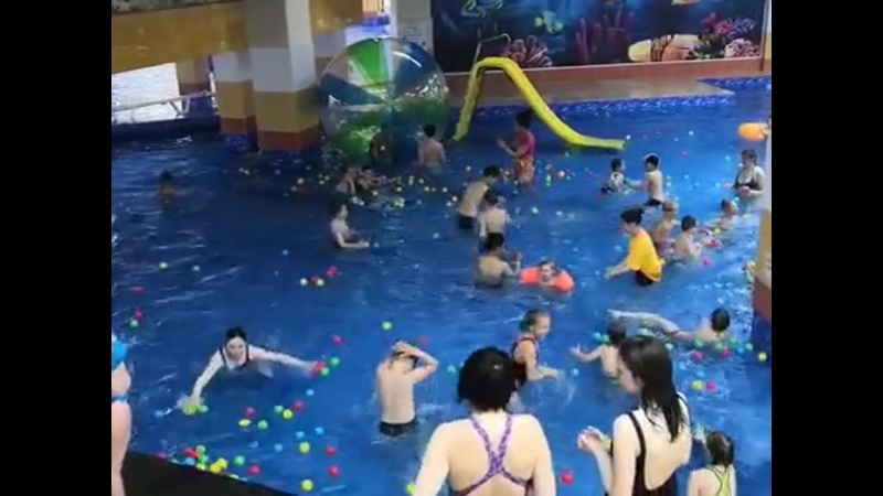 WhatsApp Video 2019 06 19 at