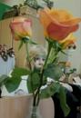 Персональный фотоальбом Татьяны Горшениной