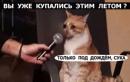 Lelik Хы -  #33