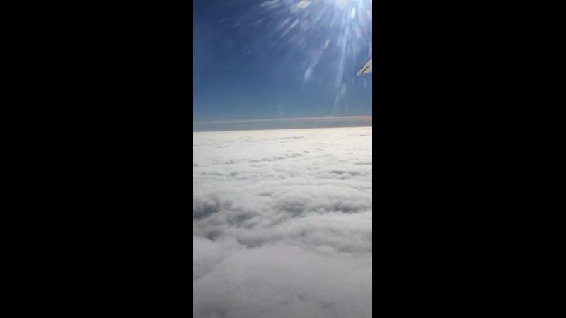 Видео от Никиты Мизгирева