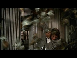 """Птицы"" //1963, триллер// Альфред Хичкок"