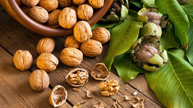 Чем полезен грецкий орех для организма человека
