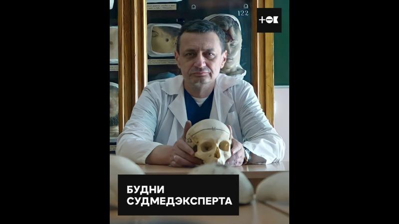 По ту сторону профессии судмедэксперт