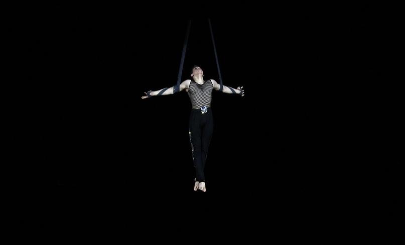 Режиссёр в цирке, изображение №2