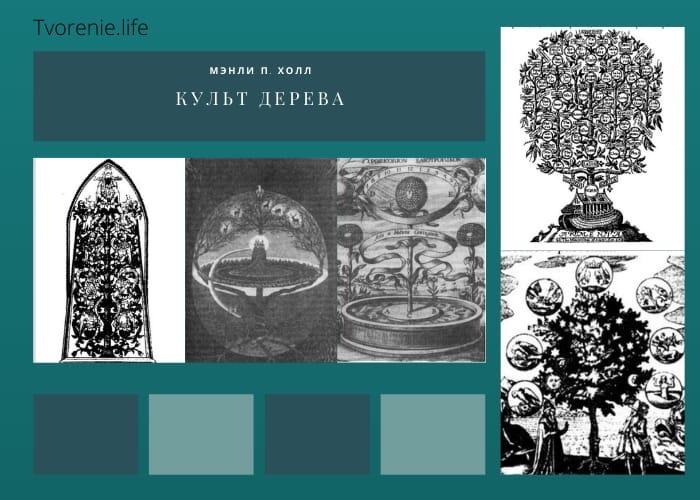 КУЛЬТ ДЕРЕВА (Из книги Мэнли П. Холла «Энциклопедическое изложение ... символической философии» FeWB7gwfxFI