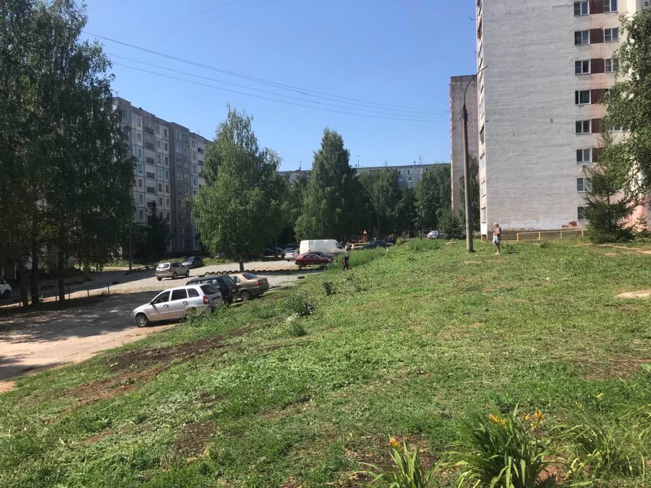 Улица Конева дом 5 кошение травы