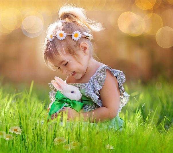 Кролиководство | группа