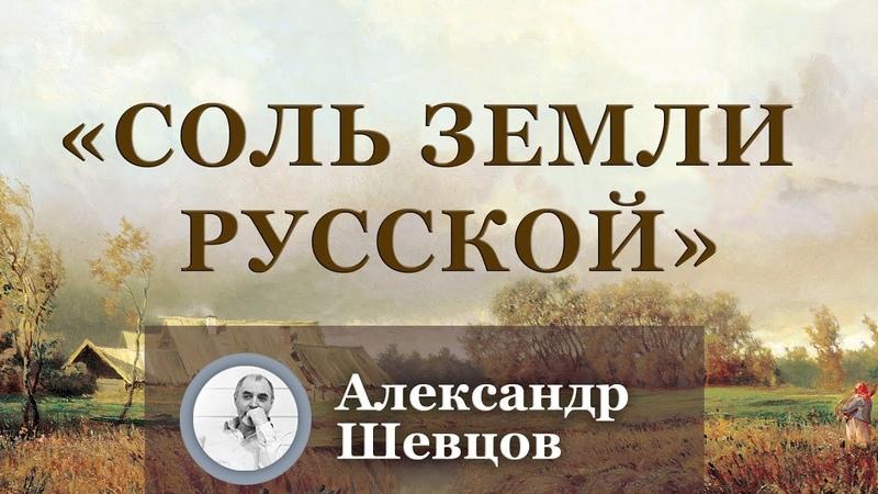 Соль земли русской Александр Шевцов