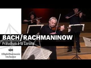 Bach/Rachmaninow: Präludium à la Corona | NDR Elbphilharmonie Orchester