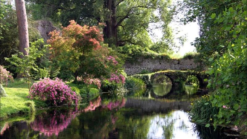 Arca Balamb Garden