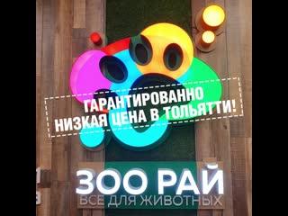 """СКИДКИ ДО 40% НА """"НЕКСГАРД СПЕКТРА""""!"""