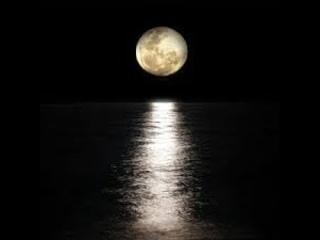 Lola & Hauser - Moonlight Sonata (30 Min)