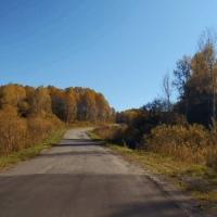 Фотография профиля Динуры Кабдыловной ВКонтакте