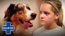 Ветеринар Бондай Бич Убитая горем владелица собаки боится потерять второго щенка за год / Heartbroken dog owner fears losing her second puppy in a year Bondi Vet