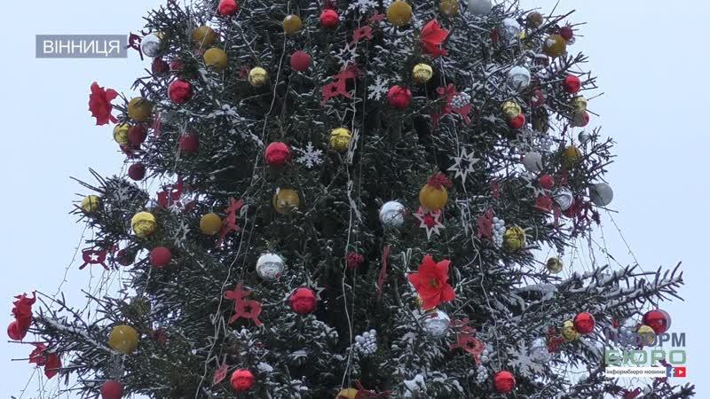 300 деревець для вінницької ялинки